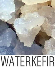 Over water kefir korrels